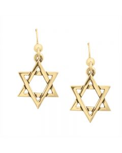 14Kt Gold Hook Earrings - Star of David