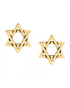 14Kt Gold Earrings - Star of David